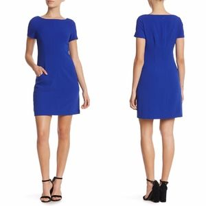 NEW Eliza J COBALT BLUE Cap Sleeve Shift DRESS 14P